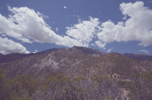 this is where our San Jacinto fragrance comes from #mountainsinabottle