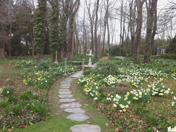 Early Spring at Blithewold Mansion, Bristol, RI - Our Natural Heritage