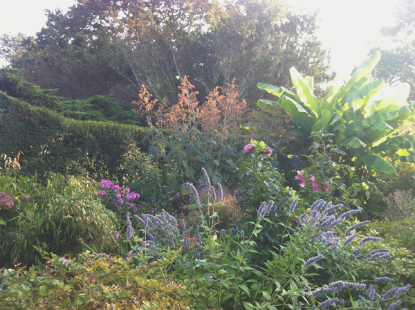 The Gardens at Rough Point