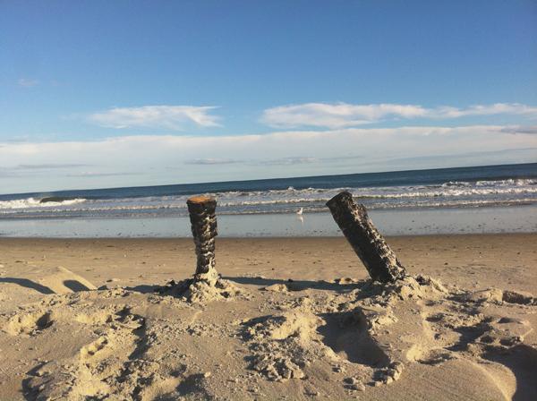 Goosewing Beach Preserve Little Compton RI