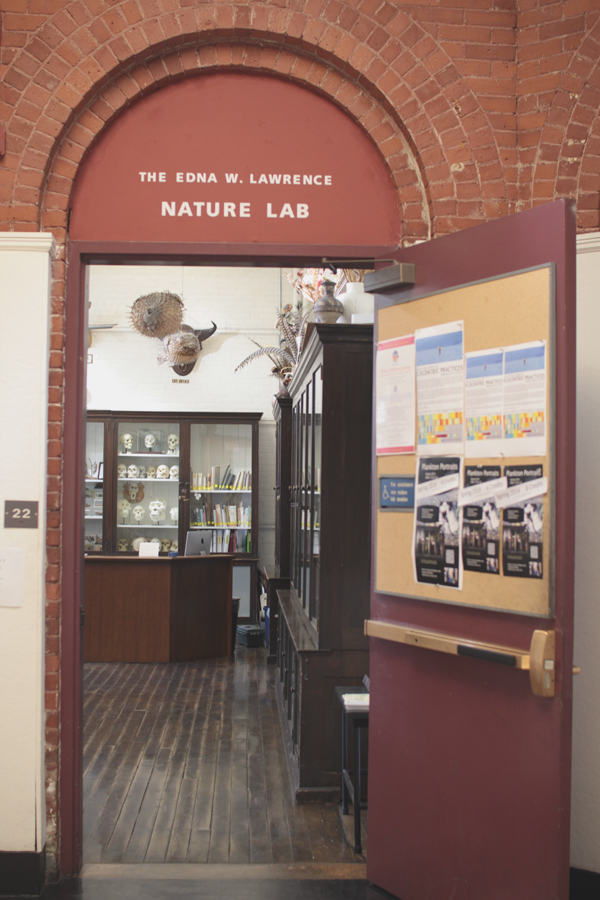 A visit to the engaging RISD Nature Lab