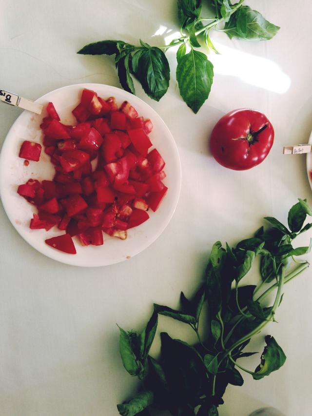 Tomato Tasting at Casey Farm