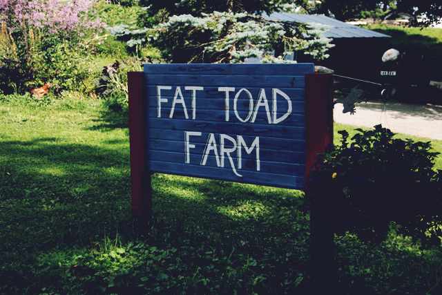Tasting Local Goat Milk Caramel at Fat Toad Farm
