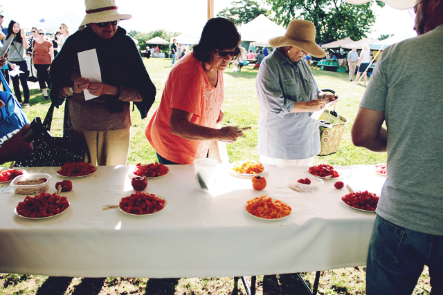 Tomato Tasting at Casey Farm