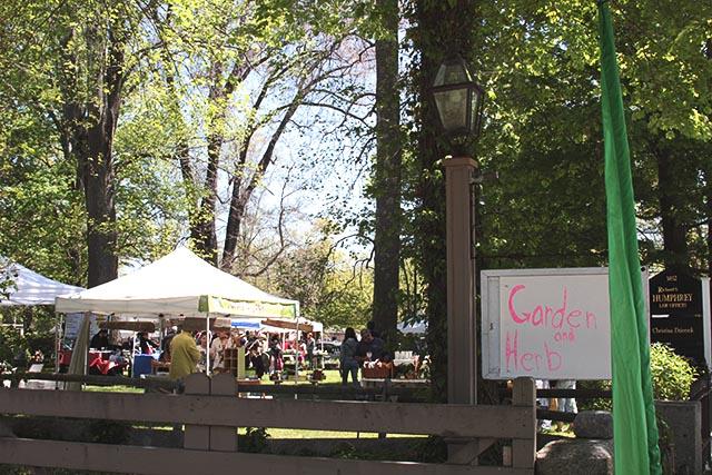 Tiverton Garden and Herb Festival