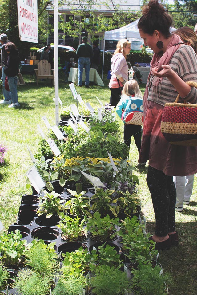 Tiverton Garden and Herb Festival