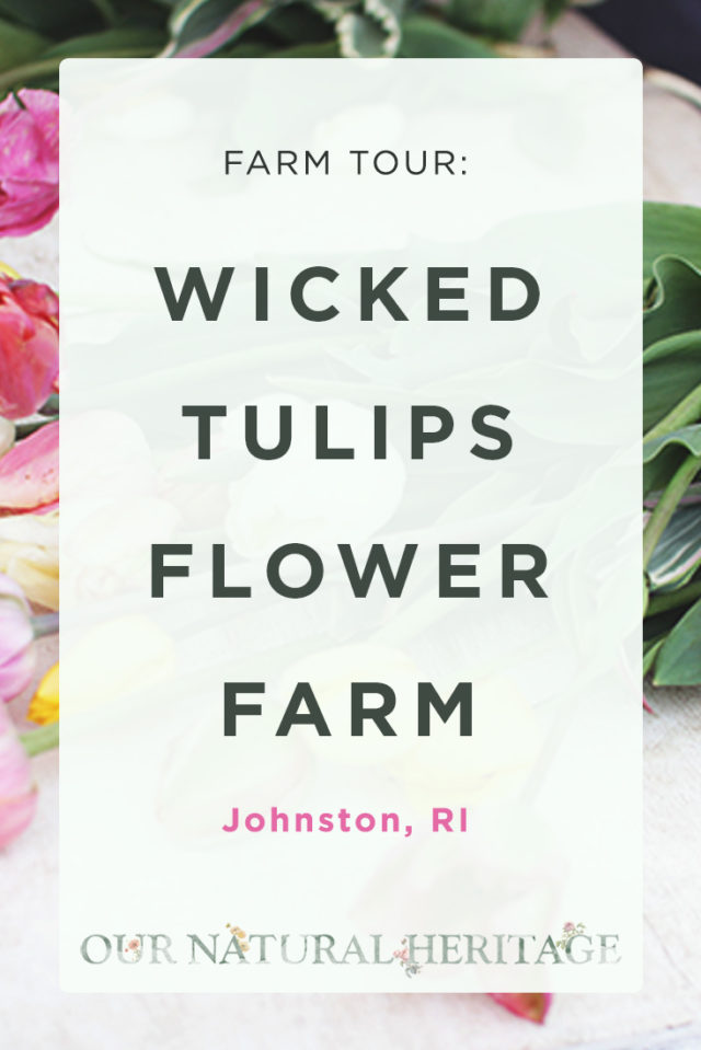WickedTulipsFlowerFarmTourRI