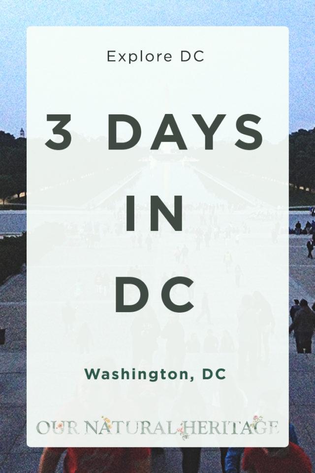 Road Trip to Washington DC