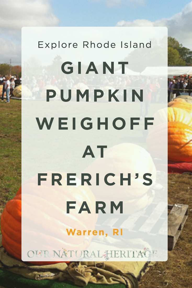 Frerich's Farm Giant Pumpkin Weigh-off