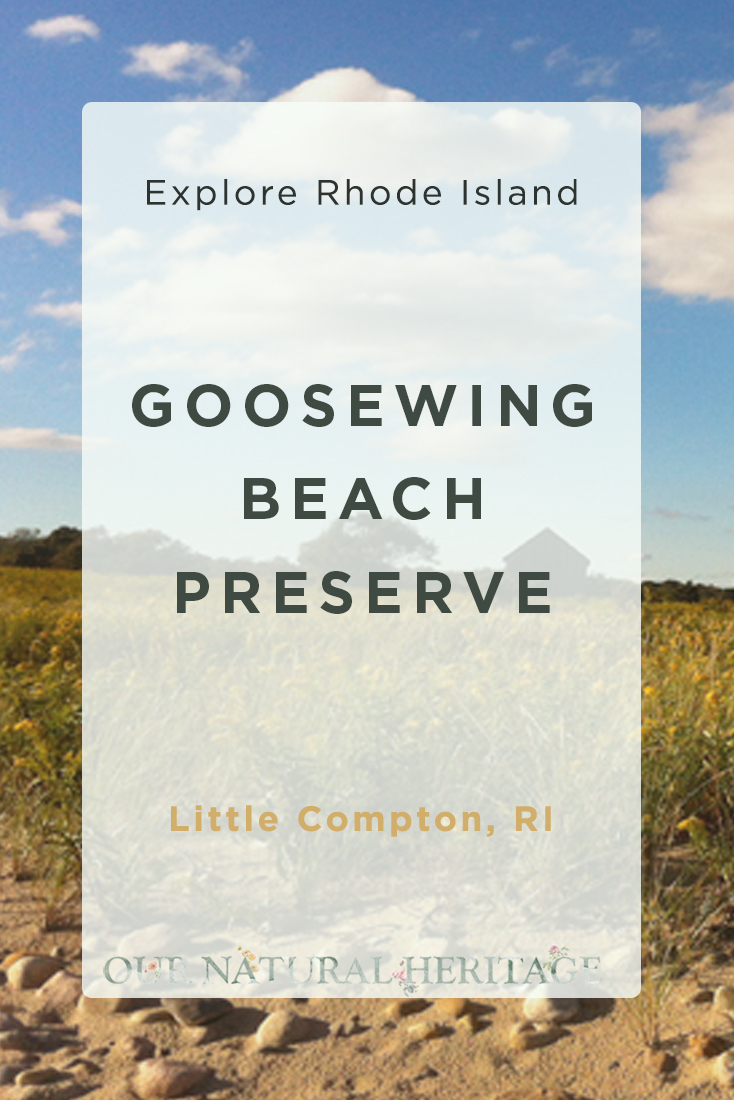 Goosewing Beach Preserve Little Compton RI