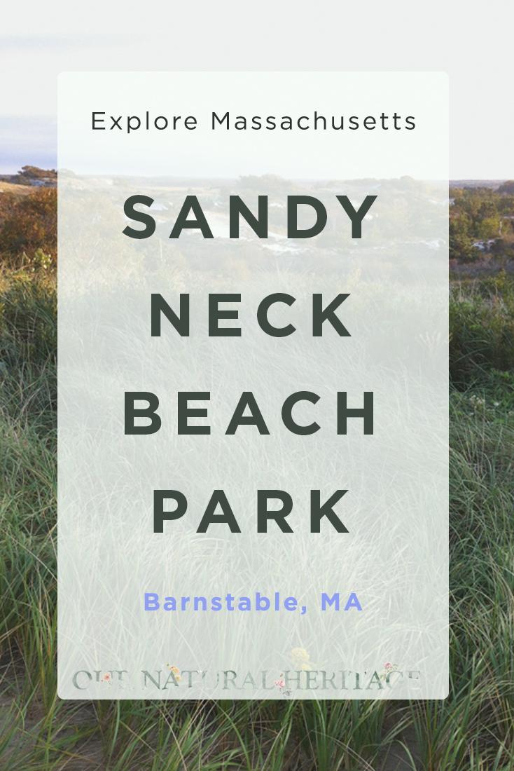 Sandy Neck Beach Park Barnstable