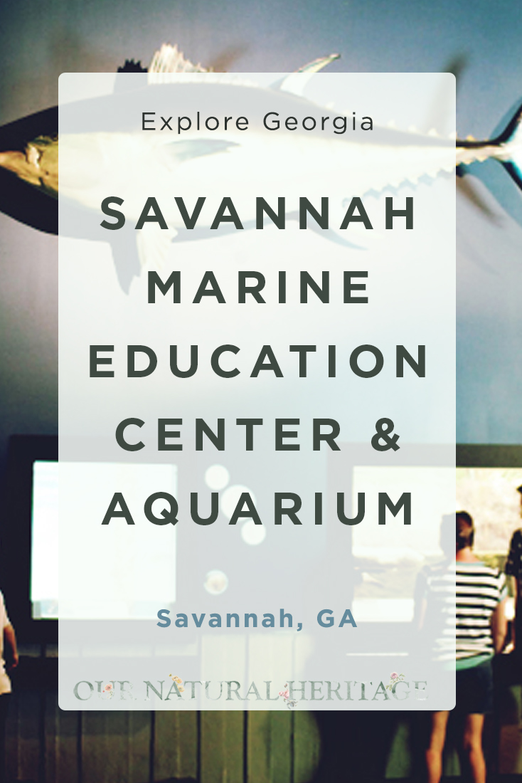Savannah Marine Education Center and Aquarium