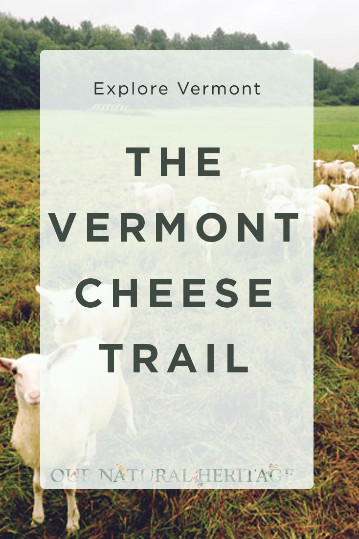 The delicious and adventurous Vermont cheese trail