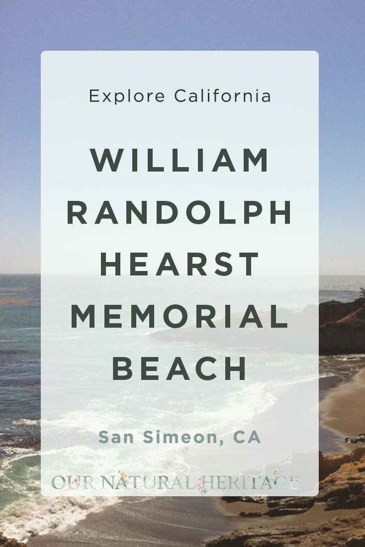 A walk along W.R. Hearst Memorial State Beach