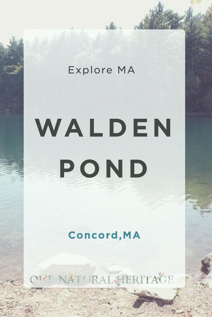Walden Pond Concord MA