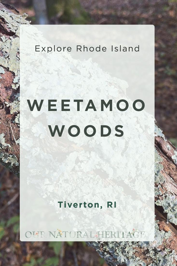 Weetamoo Woods Tiverton RI