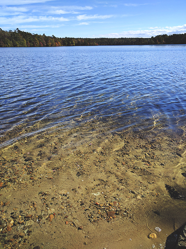 A hike in Halfway Pond Conservation Area Plymouth MA