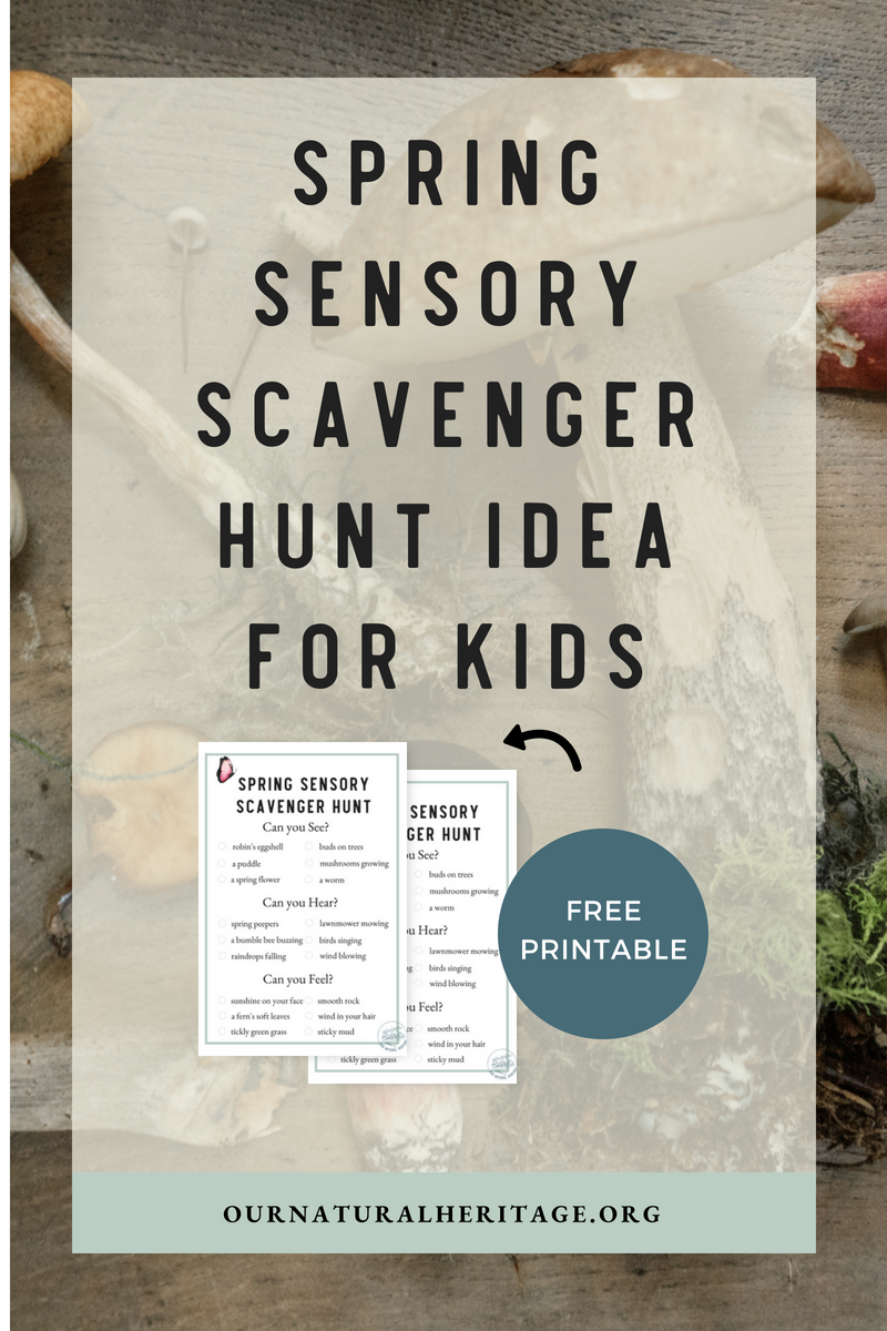 Help your kids engage their senses to learn about the exciting changes that come with Spring!