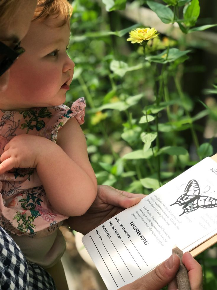FREE Montessori Homeschool Nature Inspired Lesson Plan! This Explorer Guide teaches children 4 and up about Monarch Butterfly Migration, Habitat and Life Cycle!